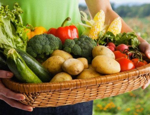 Προκηρύχθηκε το Μέτρο για τις Βιολογικές Καλλιέργειες